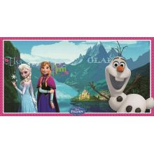 Decorazione murale Frozen