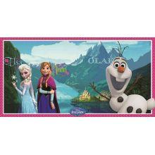 Decorazione murale Frozen