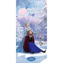 Festone Porta Frozen Ice Sketing