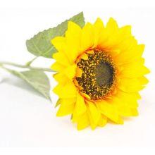 Fiore grande di girasole da 64 CM