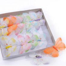 Farfalle Colorate ( 12 pz)