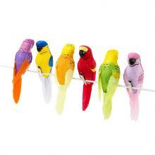 Uccellini Tropicali (6 pz)