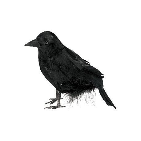 Addobbi Halloween Corvo Nero