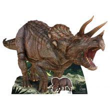 Cartonato Dinosauro Triceratops
