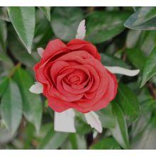 Rosa Rossa Ramo 46 cm