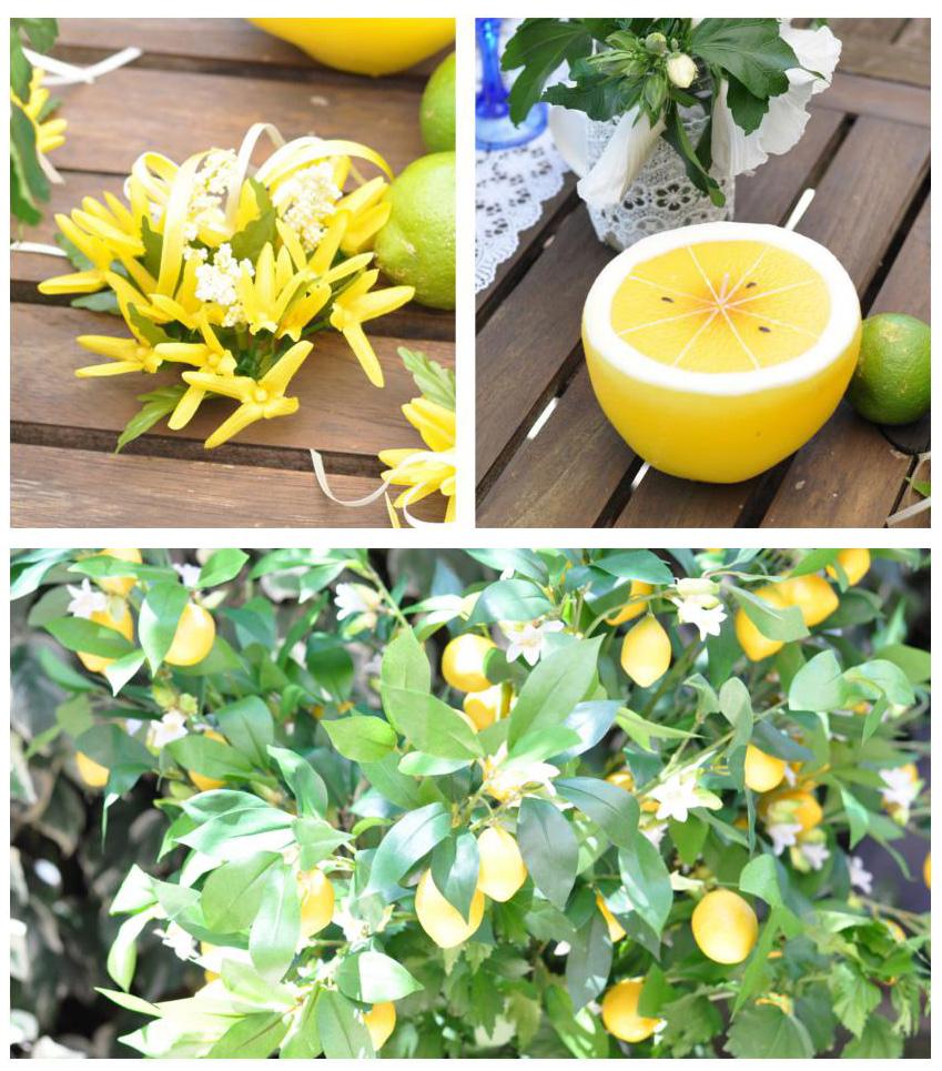 pranzo in giardino decorazione limoni