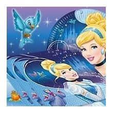 Festa Cenerentola Disney Notte D'incanto