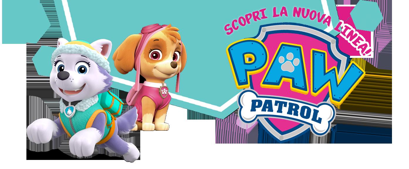 Festa Compleanno Paw Patrol Rosa Con Skye E Everest